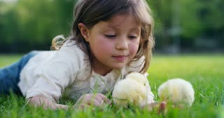 The best moments from life, the sweet girls, plays in the park with little chickens(yellow), on the background of green grass and trees, the concept: children, love, ecology, environment, youth.