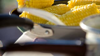 Tilt Up Of Corn On The Cob
