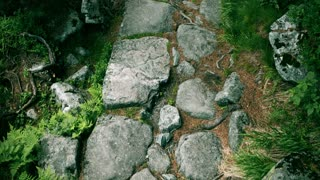Top down view steadicam walk along mountainous forest rocky path