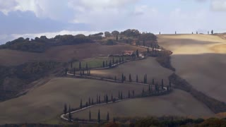 Winding Road with Cypress Trees in Tuscany. Fast Motion