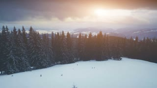 Winter mountains, sunset time. Ski slope, pine tree forest. Dramatic nature landscape. Holidays in Ski Resort Bukovel, Carpathian Mountains, Ukraine. 4K Aerial Drone View. Vintage toning effect