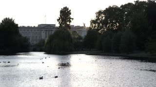 View of Buckingham Palace From St. James Park