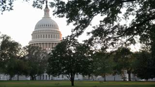 View of Capitol Building Dome Through Trees in DC Park