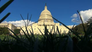 View of Capitol Building Through the Grass
