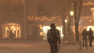 Walking In Snow Storm