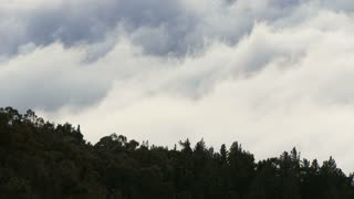 Washing Clouds Over Dark Forest