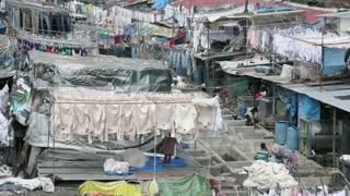Washing, Dhobi Ghats, Mahalakshmi, Mumbai Bombay, India, Asia