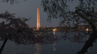 Washington Monument at night 5