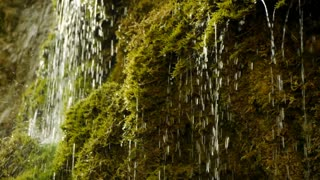 water drops. clean natural water. fresh spring waterfall. green nature