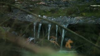 water flow in and out of focus