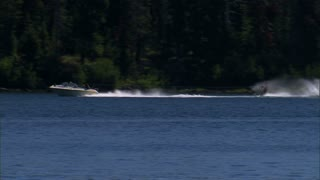 Water Skiing On Park Lake