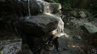 Water stream over rocks 2