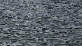 Water Texture-wide