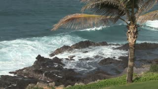 Waves Crashing by Hawaii Landscape 4