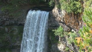 Whistler Woods Waterfall