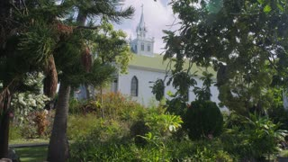 White Church Through Trees
