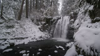 white shot of waterfall in snowy forest