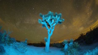 Wide Sky Timelapse Above Joshua Tree
