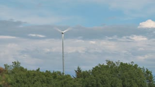 Wind Turbine In Forest