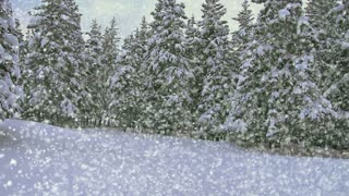 Winter Landscape Snowfall 2