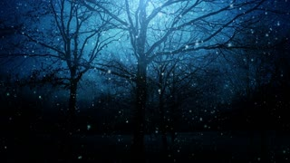 Winter night background animation loop
