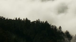 Wispy Clouds Through Mountain Forest Timelapse