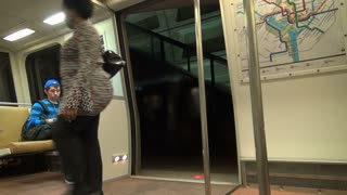 Woman Enters Metro Train Doors Closing