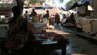 Women at Fish Market in India
