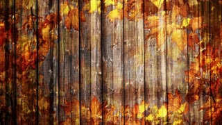 Wooden autumn background loop