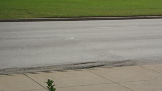 'X' Marking Kennedy Assassination at Dealey Plaza