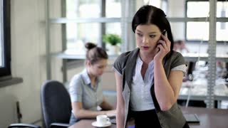 Young businesswoman talking on mobilephone in the office