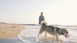 Young female playingwith siberian husky dog on the beach at sunrise, slow motion