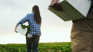 Young happy farming couple carrying basket full of produce on their farm.