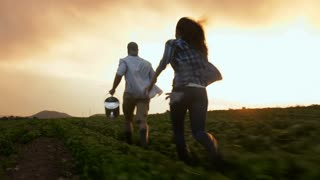 Young happy lifestyle couple running through their crop in excitement of the high amount of produce grown.