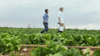 Young happy lifestyle farming couple carrying water can/ walking through crop and inspecting produce before harvest.