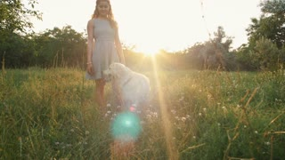 Young woman playing with retriever dog in park during sunset
