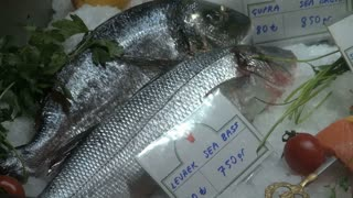 Zoom Out from Fresh Sea Bass in Market 2