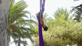 Attractive sporty acrobatic dancer working out on a pair of purple silk ribbons hanging from a palm tree upside down with extended legs