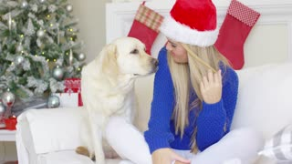 Christmas girl with her dog friend at the couch waiting for holidays time. Blondie wearing Santa Claus hat on her head. Havin fun together.