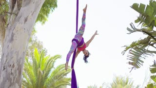 Fit shapely female gymnast working out on silk ribbons hanging suspended upside down from a tree outdoors in a graceful acrobatic pose with stretched arms and legs.