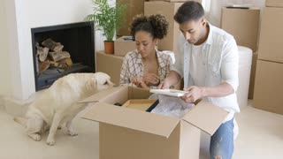Golden retriever watching his owners pack up their belongings in cardboard boxes to move house