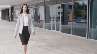 Gorgeous business woman walking