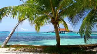 Spectacular View of Beach at Maldives