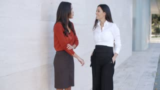 Two women friends standing chatting