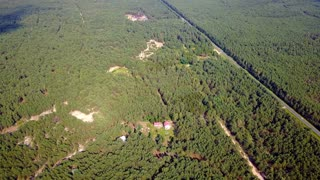 Aerial shot of coniferous green woods surrounding small farm plantation in valley in bright sunlight of summer.