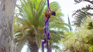 Agile young gymnast working out on ribbons practicing an exotic dance routine hanging in the air from a tree in a tropical park