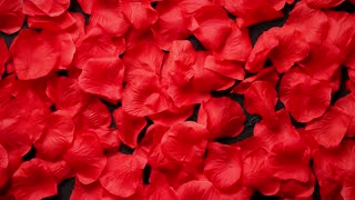 Background of beautiful red rose petals. Valentine Day or Love concept. Top view with copy space.