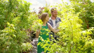 Beautiful content woman and man walking among lush green trees and plants in garden exploring plantation and smiling.