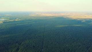 Drone shot with aerial view of spacious terrain surface with green coniferous woods and lands at distance.