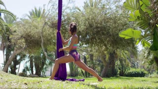 Fit muscular attractive young female gymnast warming up in a park doing stretching exercises at the foot of her silk ribbons suspended from a tree